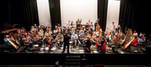 The Clare Memory Orchestra rehearsing 'The Clare Concerto'. Photo: John O'Neill